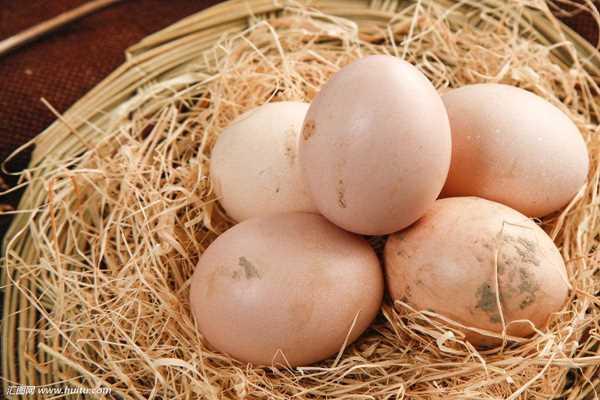 奉节高山土鸡蛋