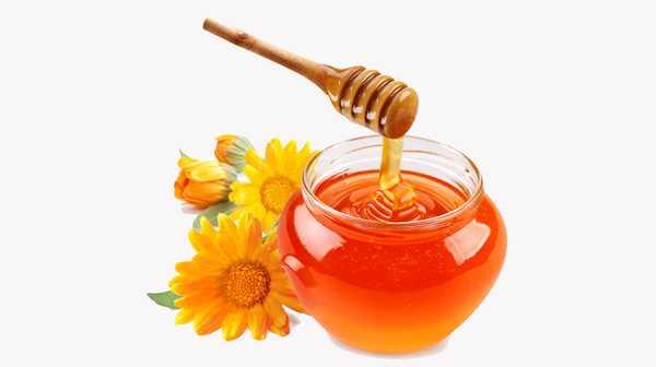 武陵山蜂蜜 250gx2瓶